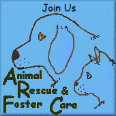 Animal Rescue & Foster Care Webring